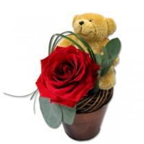 Влюбен мечок
